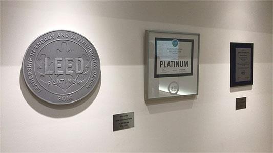 zeb_platinum